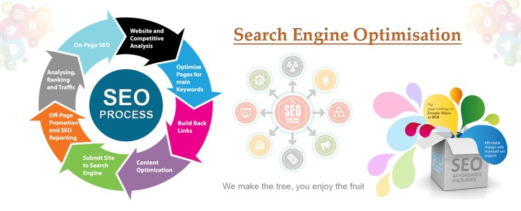 Freelance SEO Expert in Pune